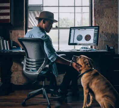 Trabajar con mascotas desde casa